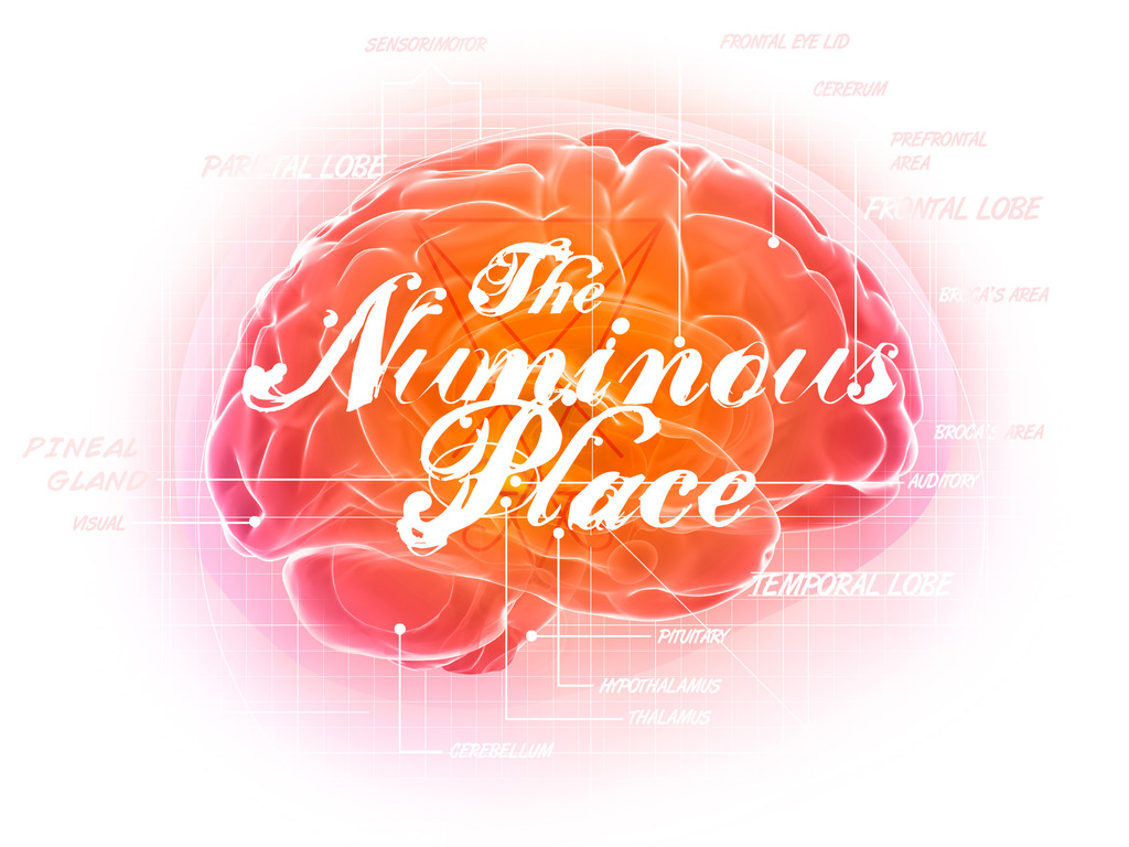 THE NUMINOUS PLACE's video poster