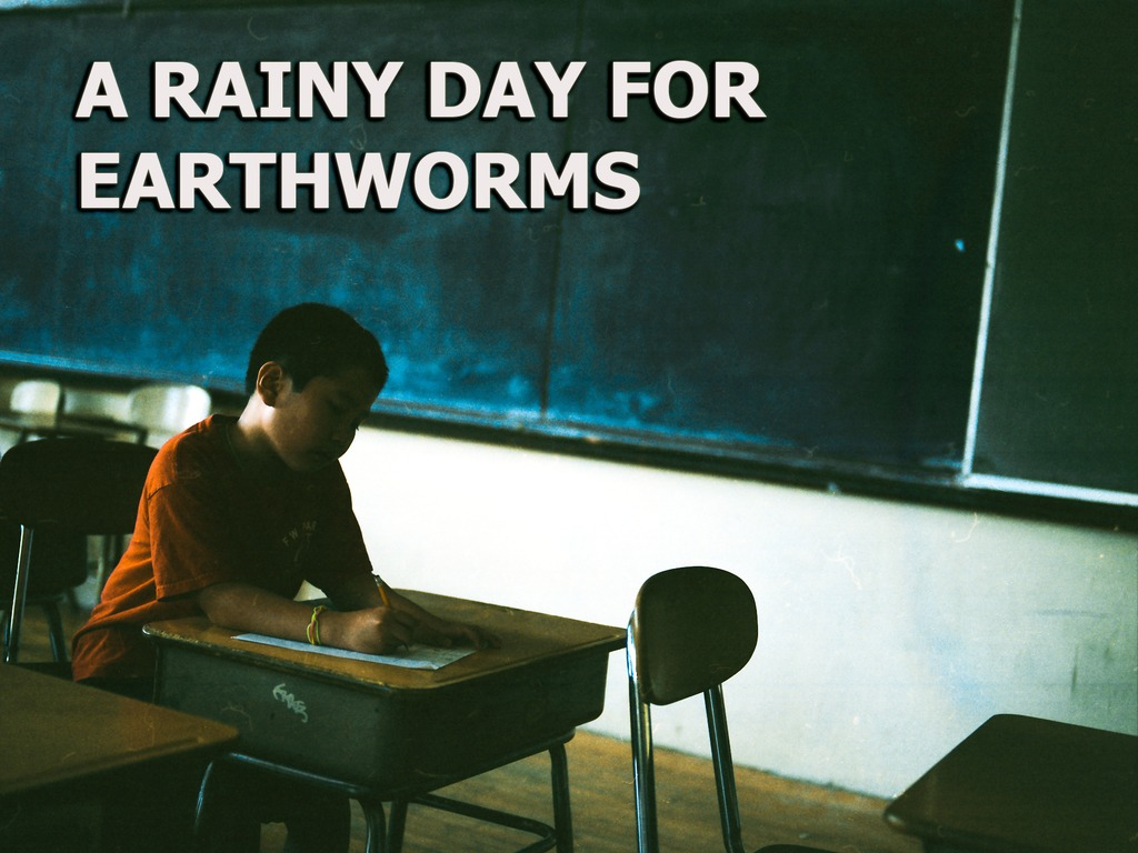 A Rainy Day for Earthworms - Feature Film's video poster