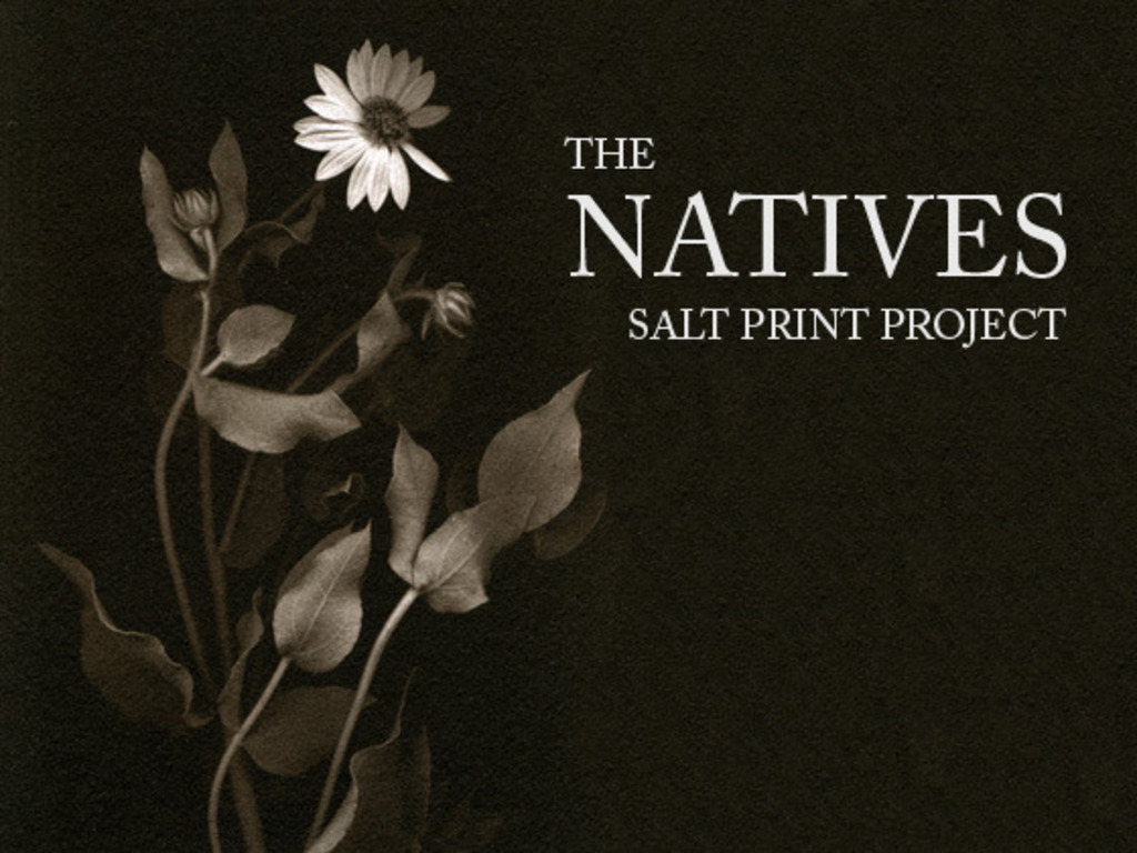 THE NATIVES - Salt Print Project's video poster
