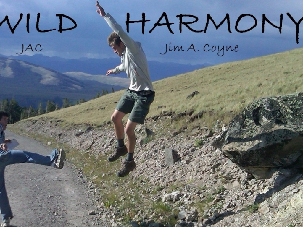 Get the word out on WILD HARMONY - book promotion's video poster