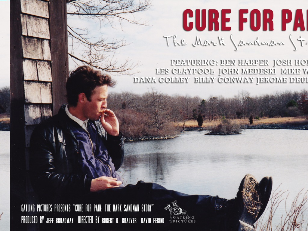 Cure for Pain: The Mark Sandman Story's video poster