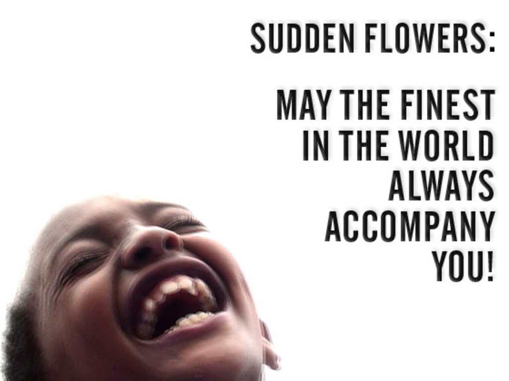 Sudden Flowers: May the Finest... - ETHIOPIA DISTRIBUTION's video poster