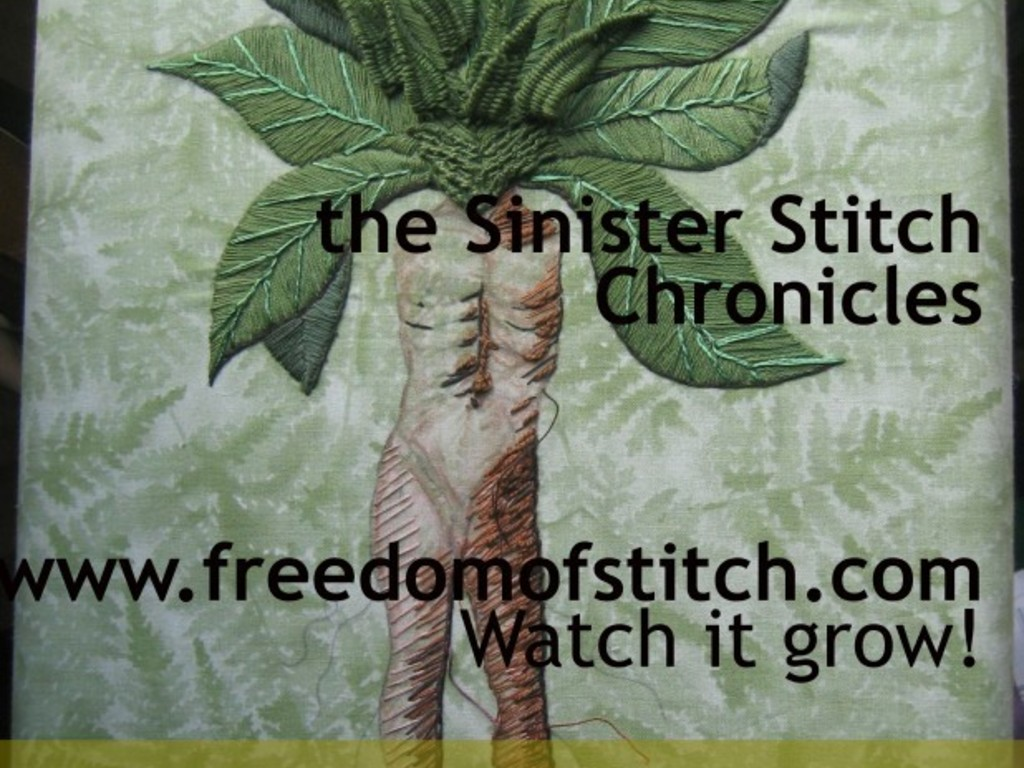 The Sinister Stitch Chronicles: a documentary's video poster