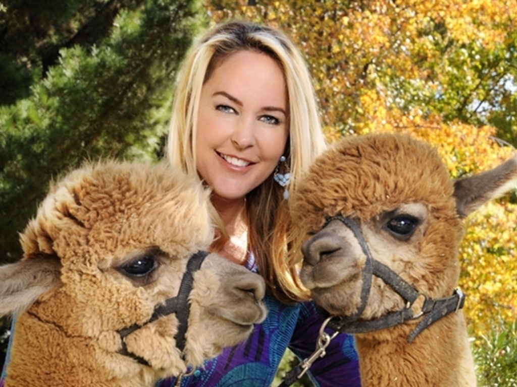 Erin Murphy Knits Alpaca Project's video poster