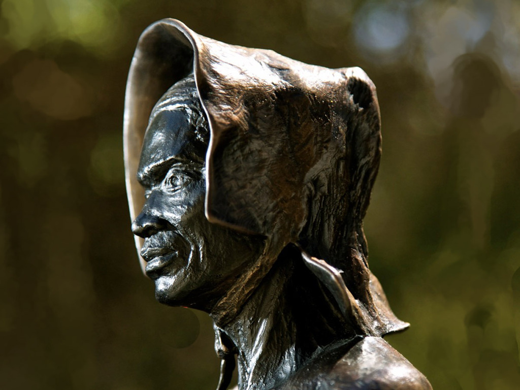 Sojourner Truth: A Journey Revisited's video poster