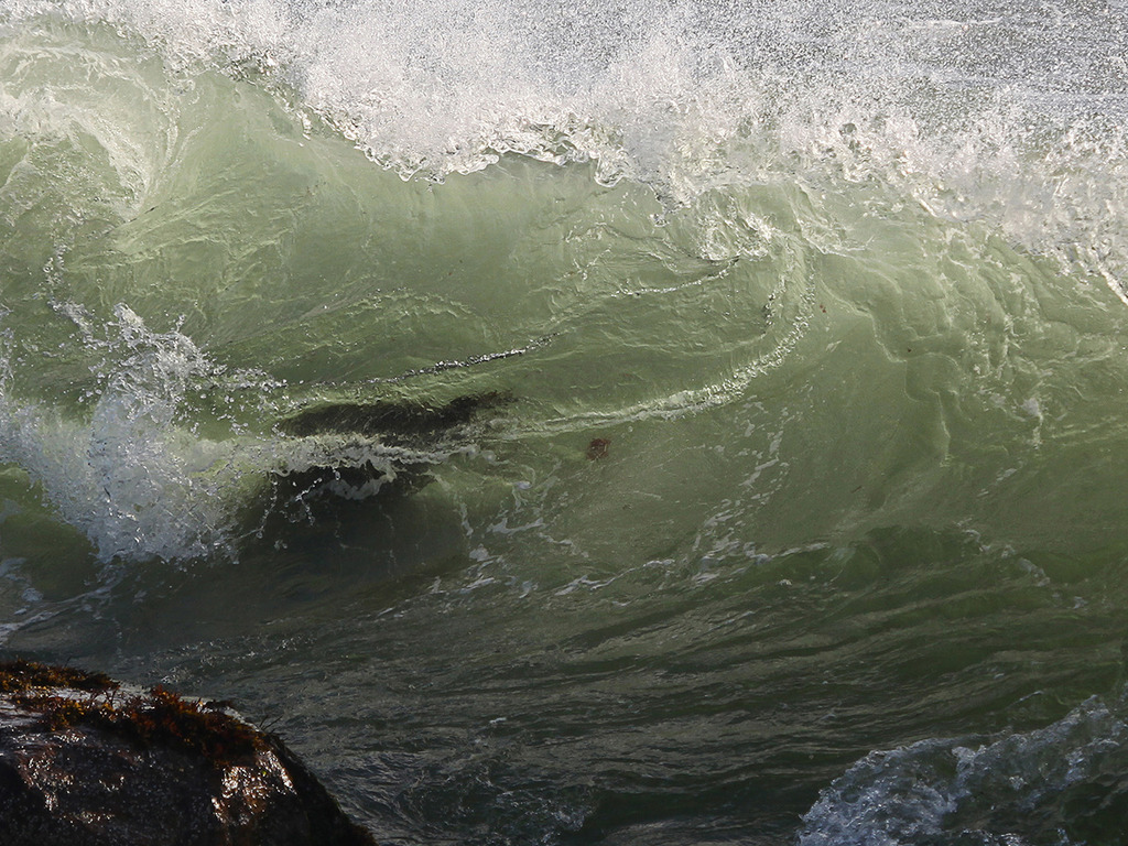 """Book:  """"Waves:  Living with the Ocean on Block Island.""""'s video poster"""