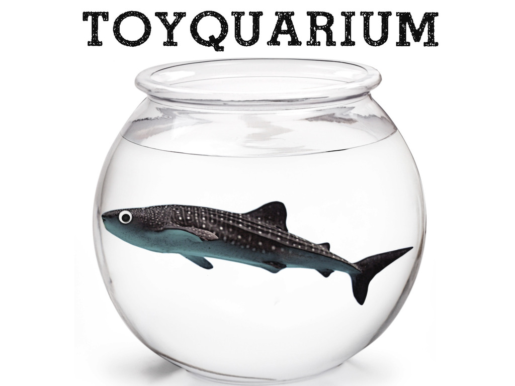The ToyQuarium Project's video poster