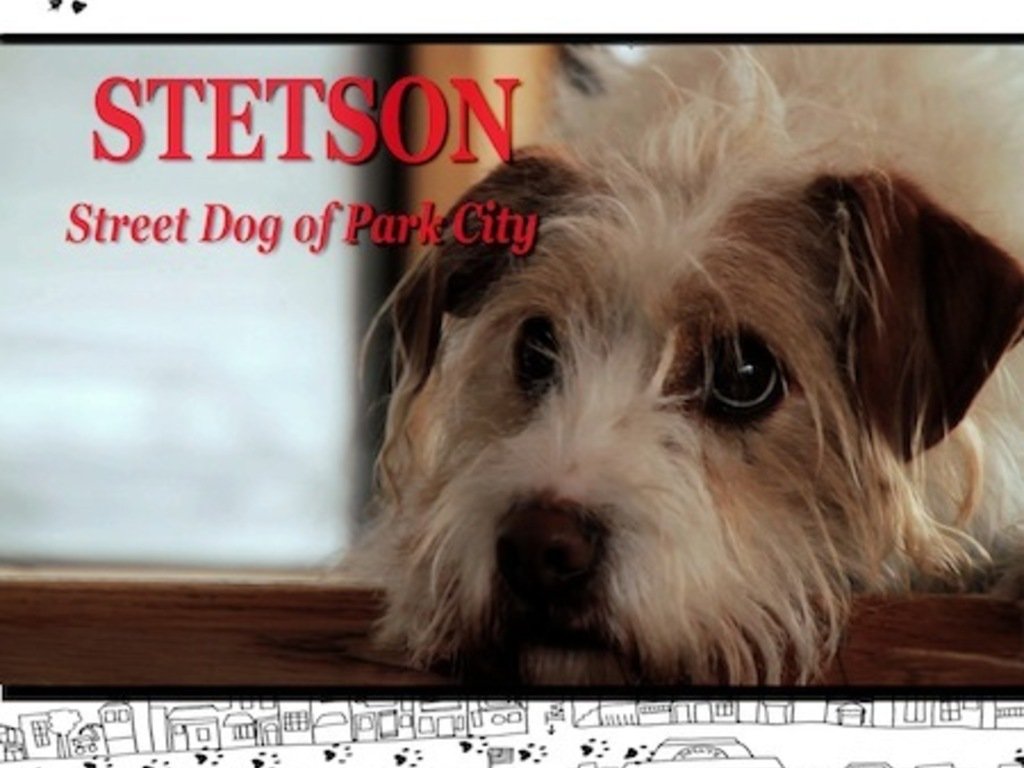 Stetson's Christmas Adventure's video poster