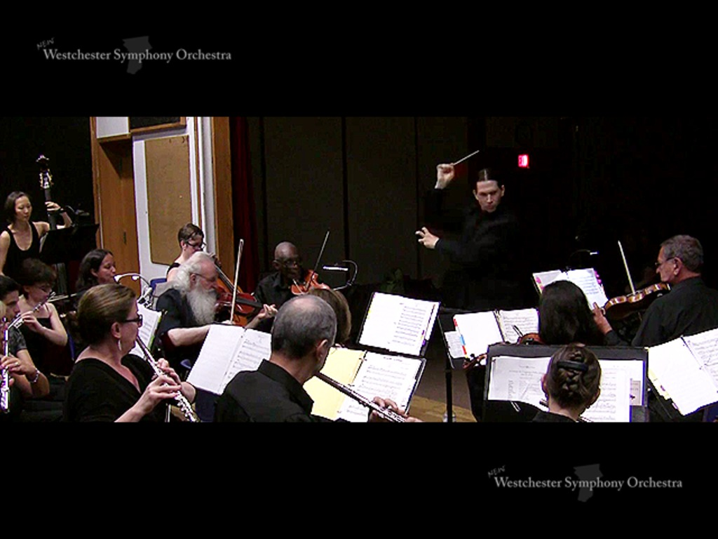 Serious Music, Serious Fun! NewWSO's Fall 2012 Concert's video poster