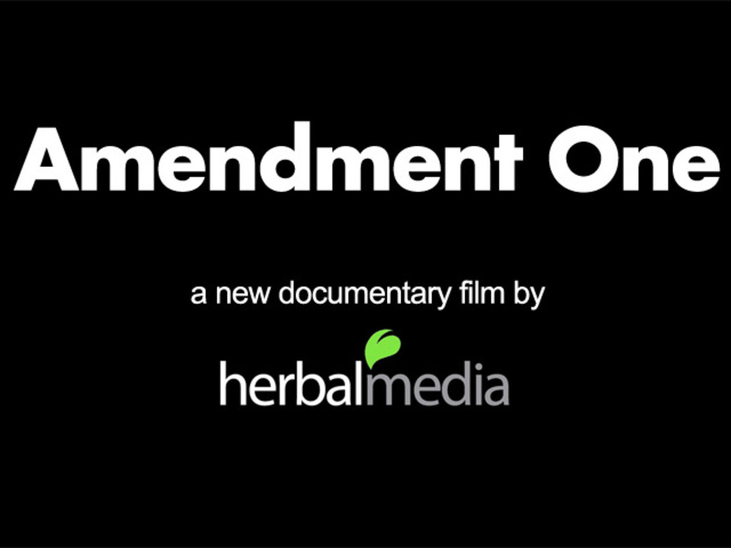 Amendment One - a documentary film's video poster