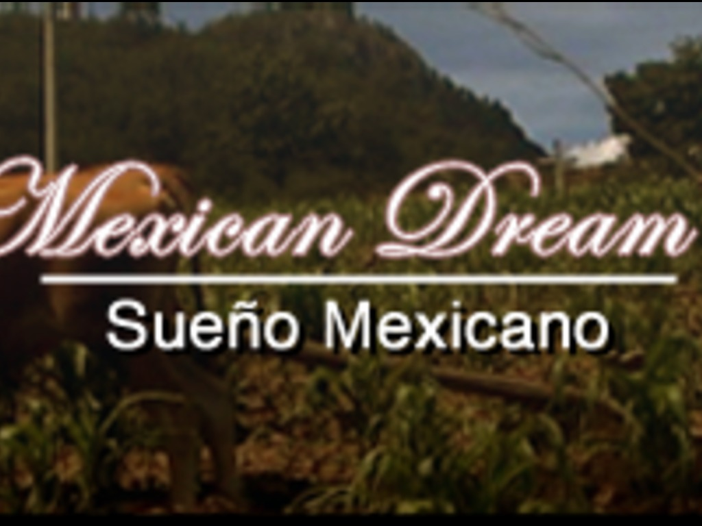 "Finish the documentary ""Mexican Dream""'s video poster"