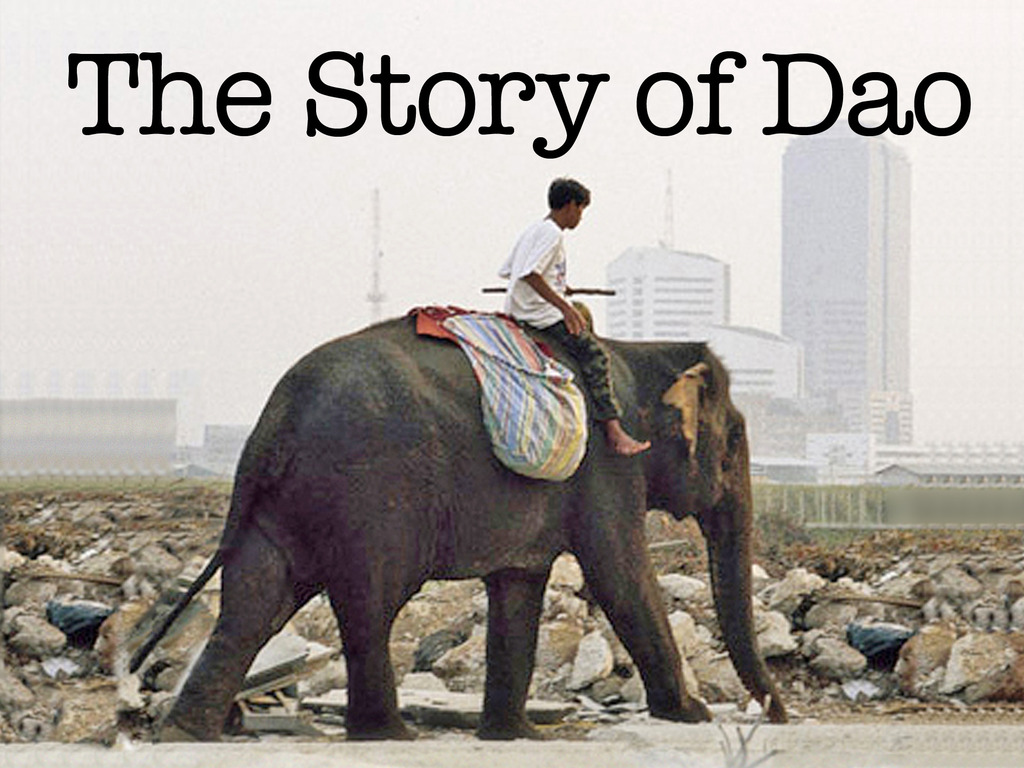 The Story of Dao -- raise awareness for elephants thru film's video poster