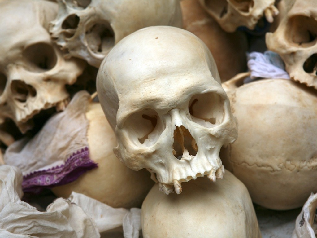 The Skeleton Seller: Uncovering India's Bone Business's video poster