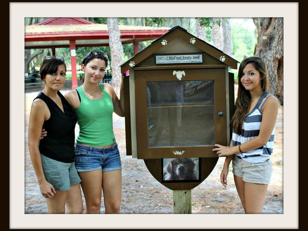 THE LITTLE FREE LIBRARY PROJECT's video poster