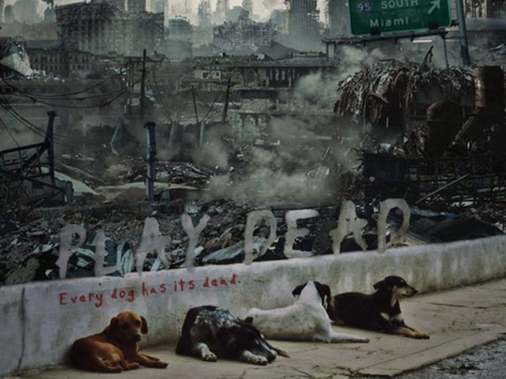 PLAY DEAD: The cutest zombie apocalypse movie EVER MADE's video poster