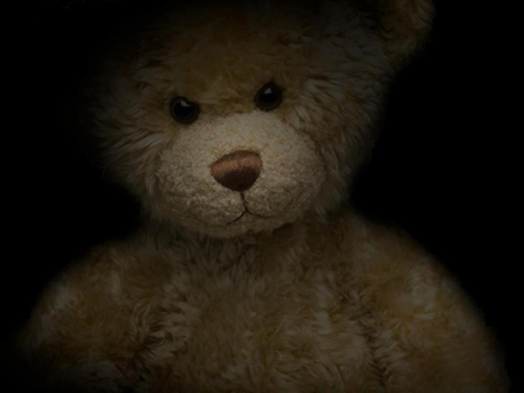 A Bear Named Teddy's video poster
