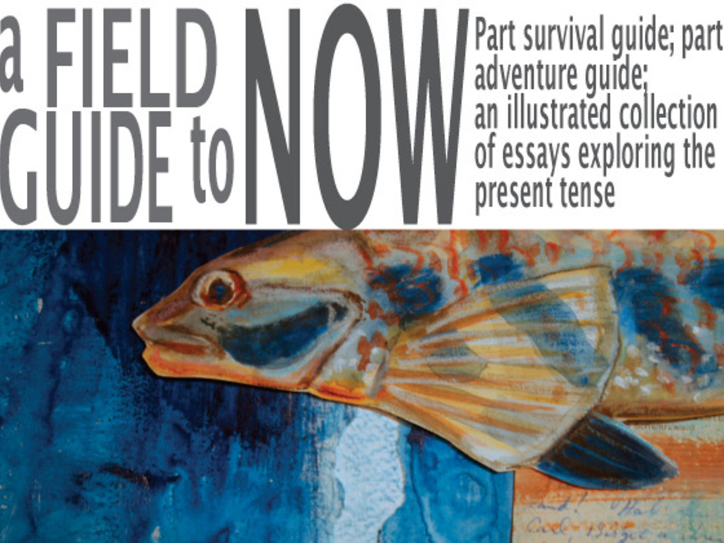 A Field Guide To Now: An Illustrated Collection of Essays and Prose 's video poster