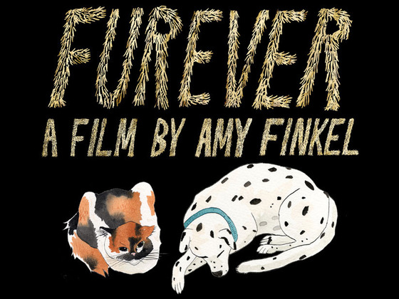 FUREVER - A documentary film's video poster