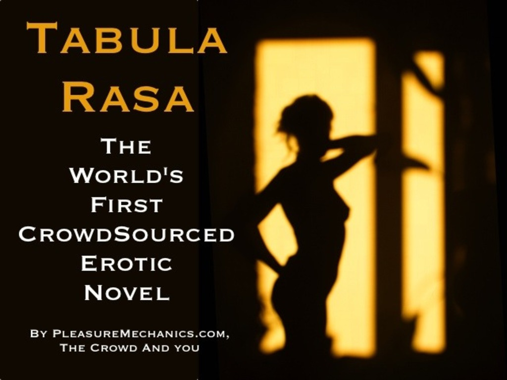 Tabula Rasa: The World's First Crowdsourced Erotic Novel's video poster