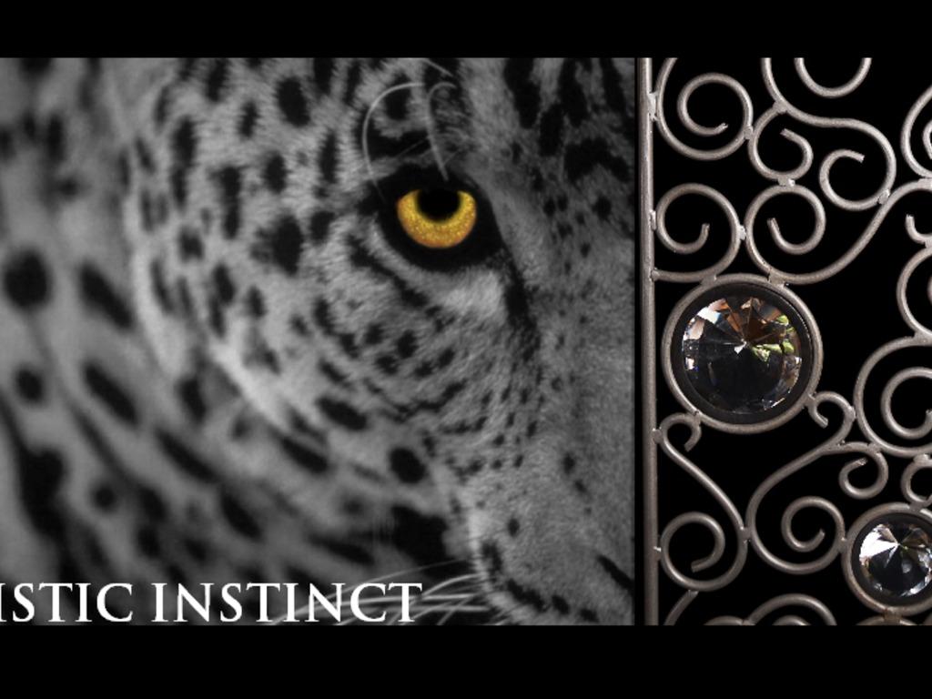 """Artistic Instinct""'s video poster"