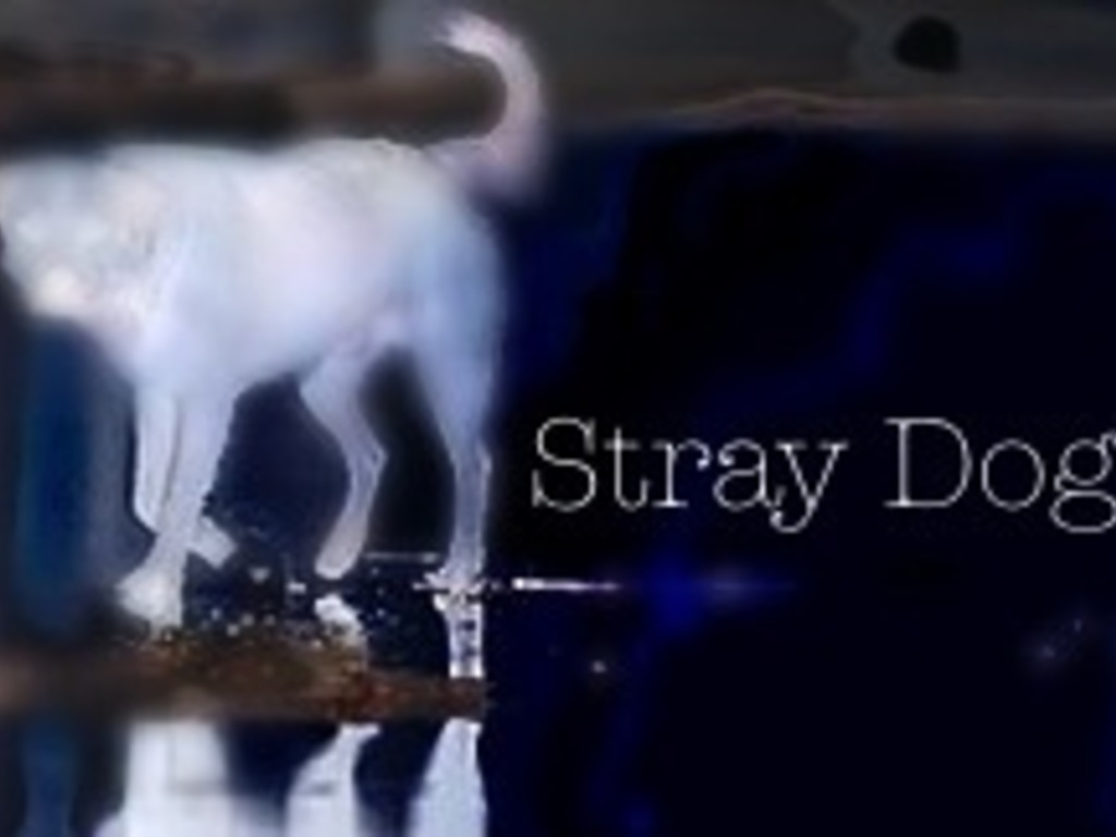 StrayDog Theatre Company Into the West Theatre Fest's video poster