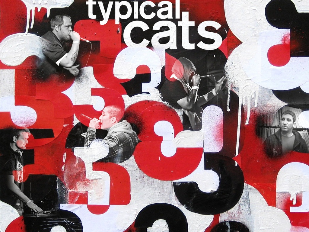 The Return of Typical Cats's video poster