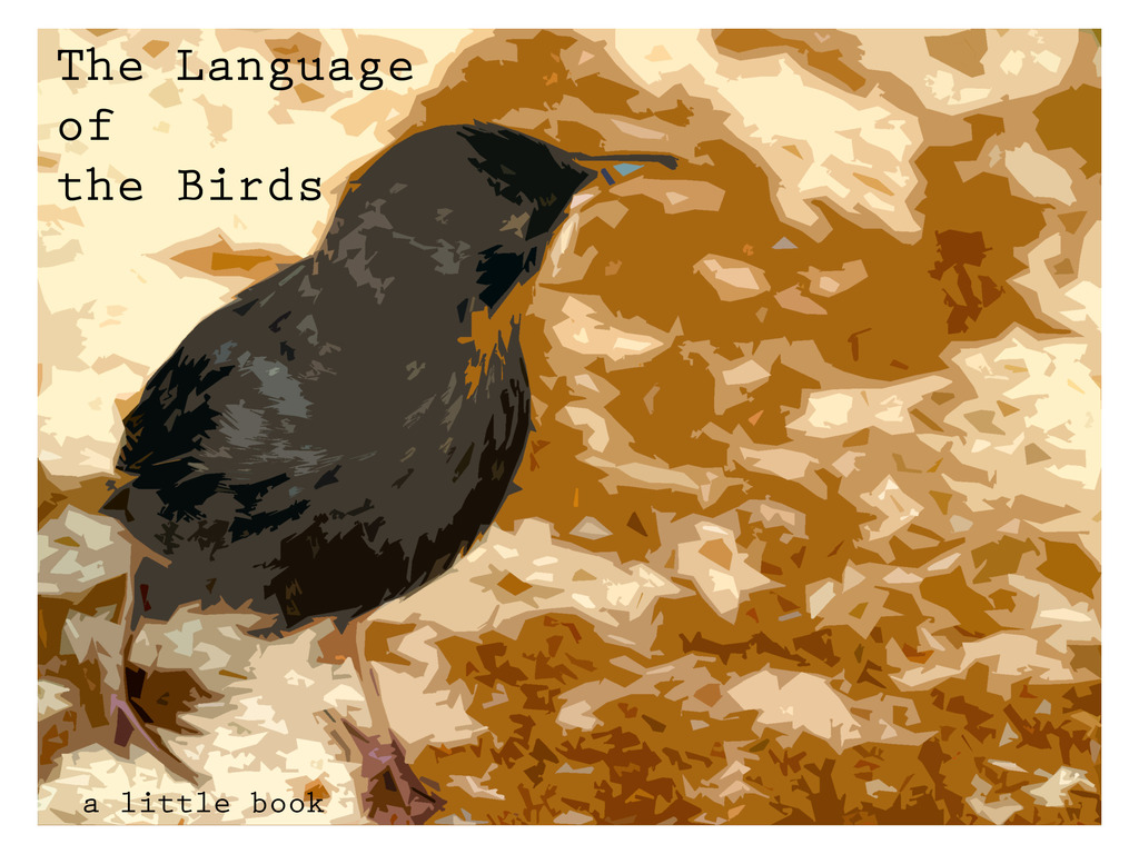 The Language of the Birds's video poster