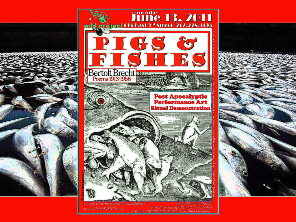 Pigs & Fishes's video poster