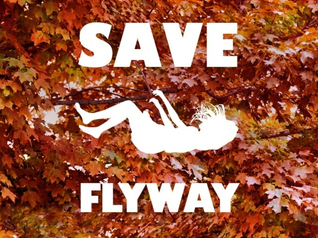 Save Flyway!'s video poster