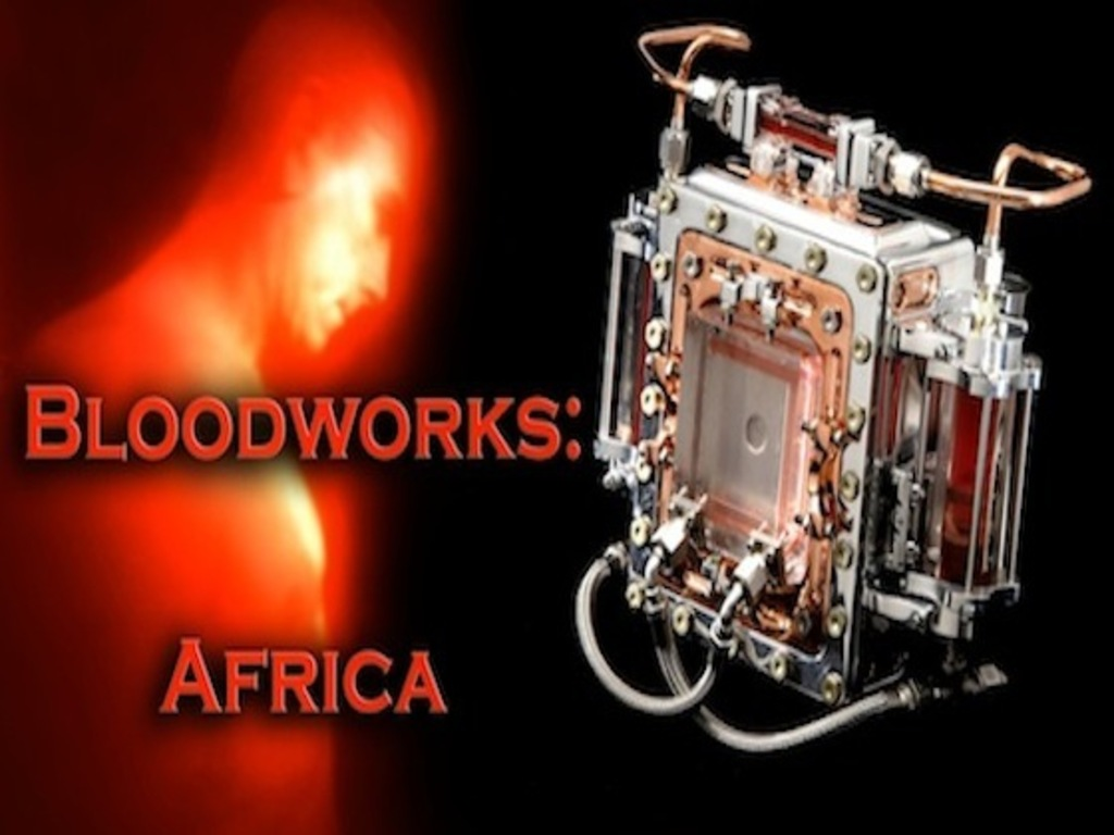 Bloodworks: Africa's video poster