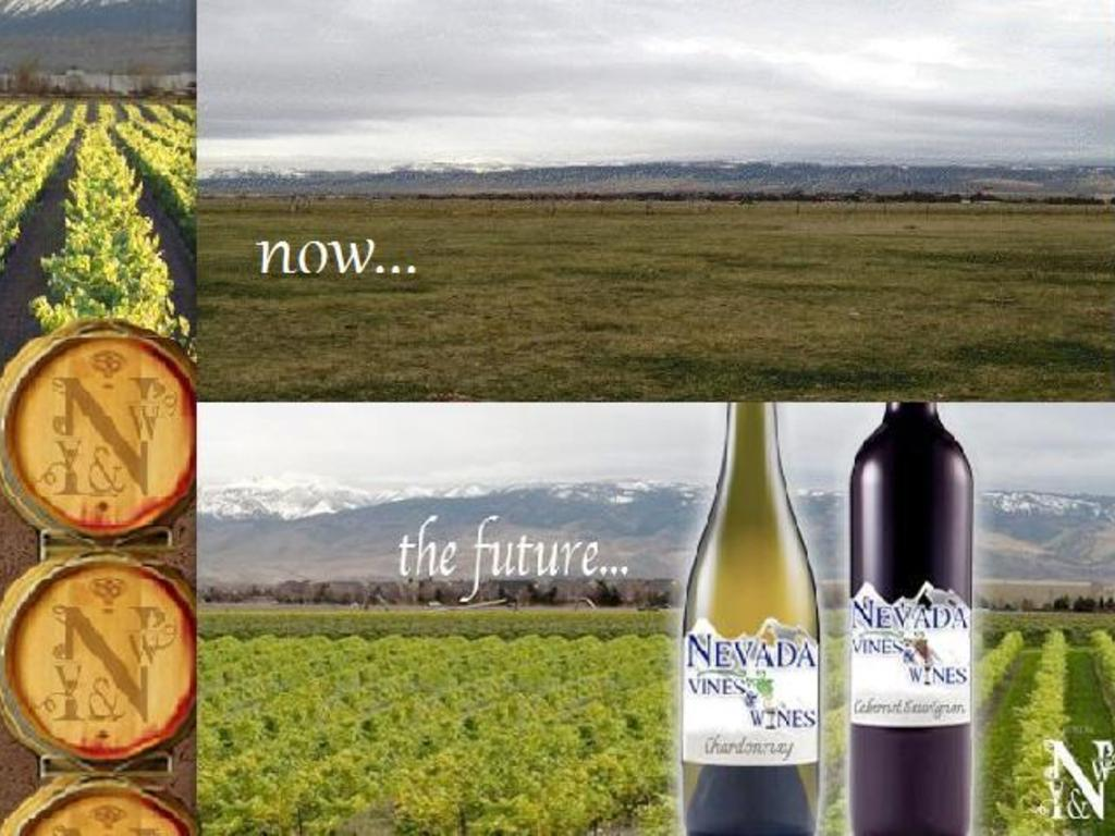 Nevada Vines & Wines - Help Us Uncork Nevada!'s video poster