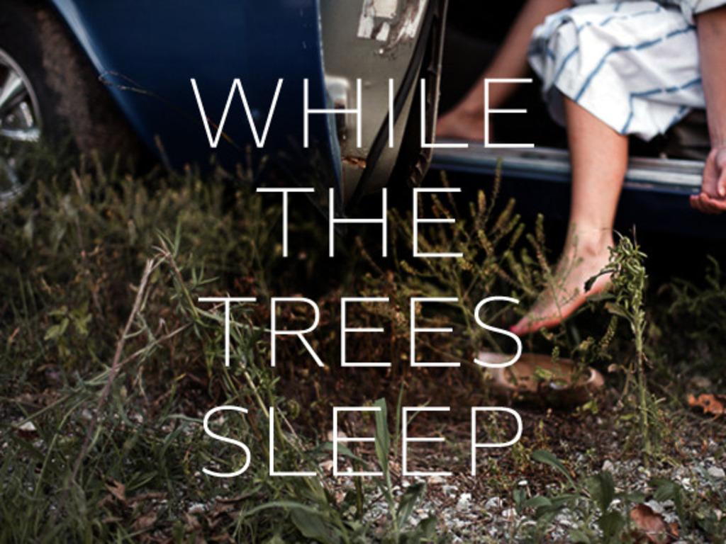 WHILE THE TREES SLEEP's video poster