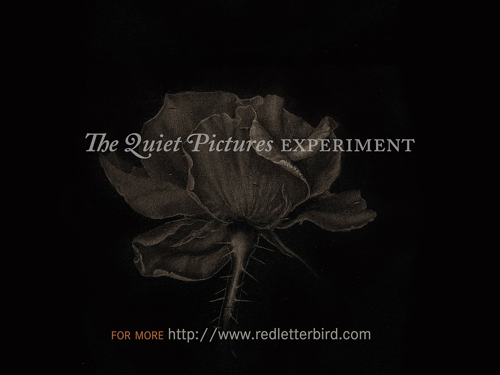 The Quiet Pictures Experiment's video poster