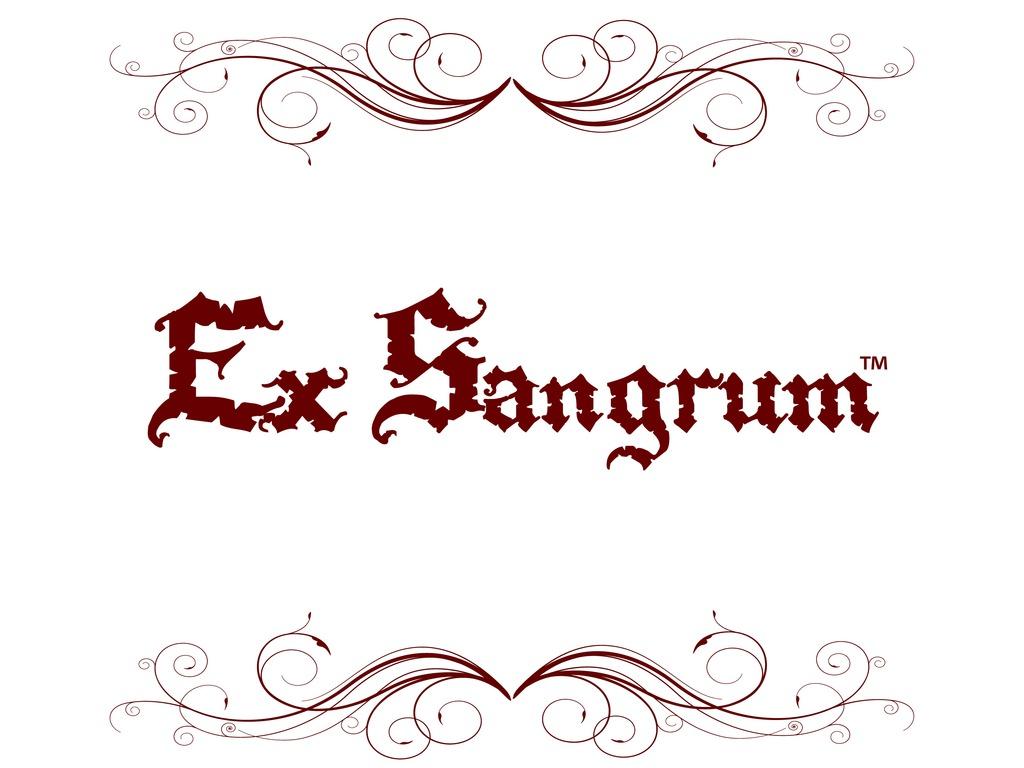 Ex Sangrum's video poster