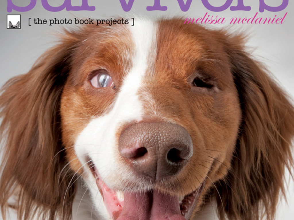 Puppy Mill Photo Book Project (& Dog Photo Books Reprinting)'s video poster