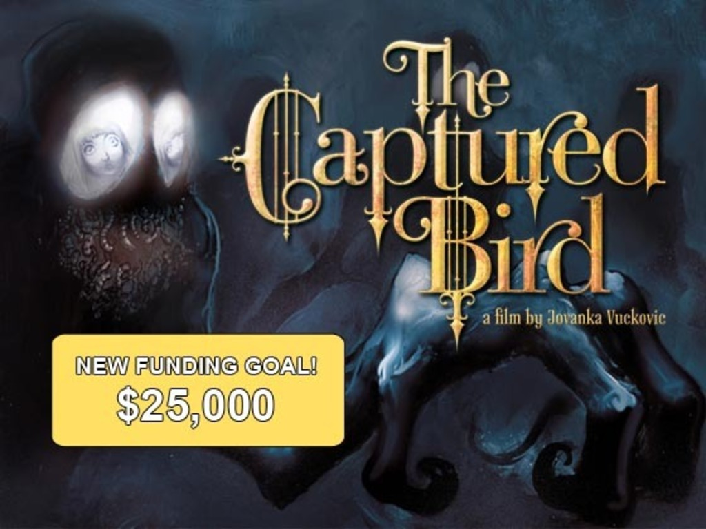 The Captured Bird's video poster