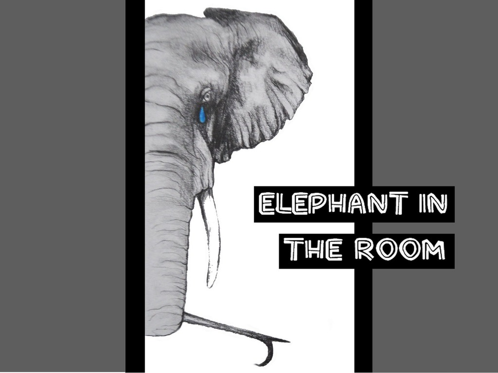 Elephant in the Room's video poster