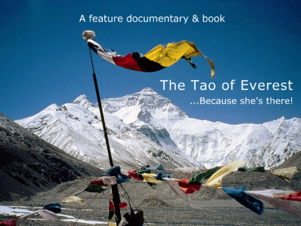 The Tao of Everest - Giving dignity to an American hero!'s video poster