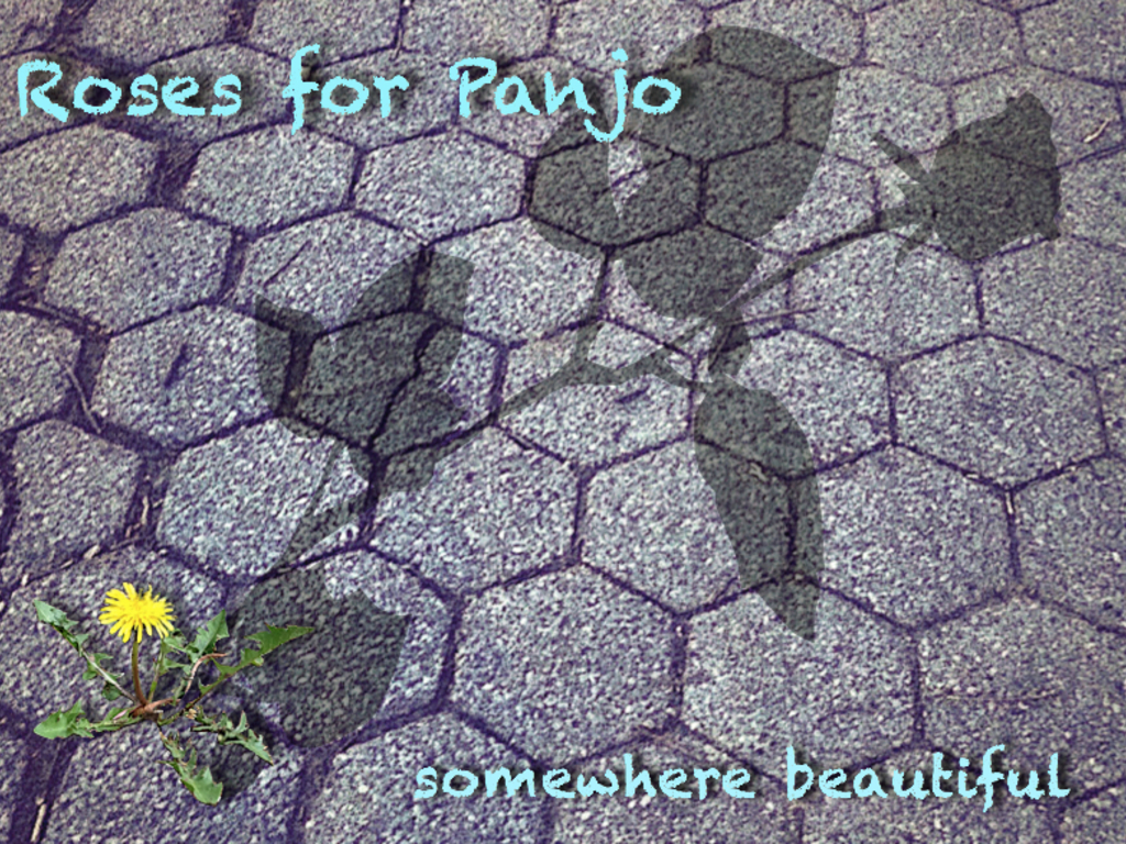"""Let's go """"Somewhere Beautiful""""!  Debut 'Roses for Panjo' CD!'s video poster"""