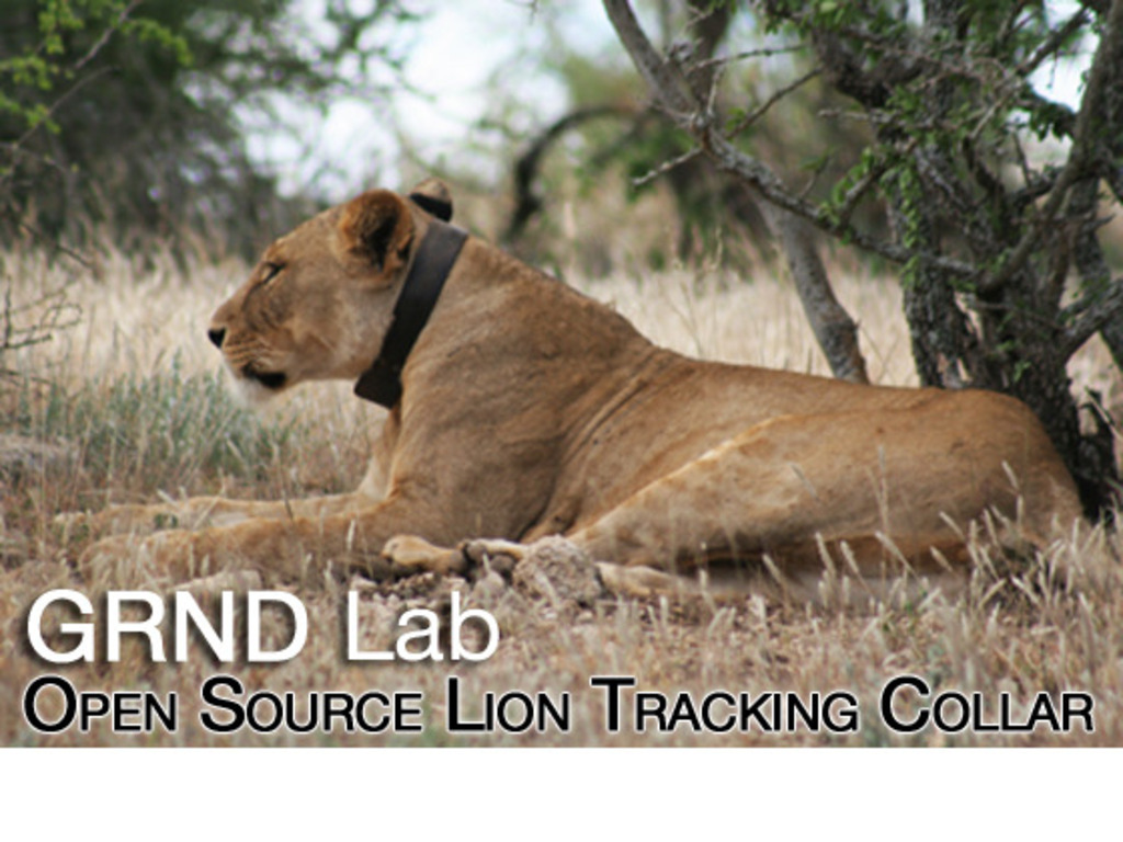 Open Source Lion Tracking Collars's video poster