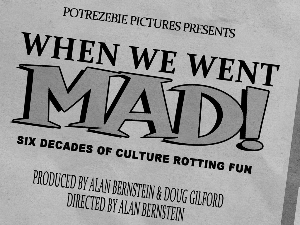 When We Went Mad! A Documentary of Ecch-ic Proportions!'s video poster