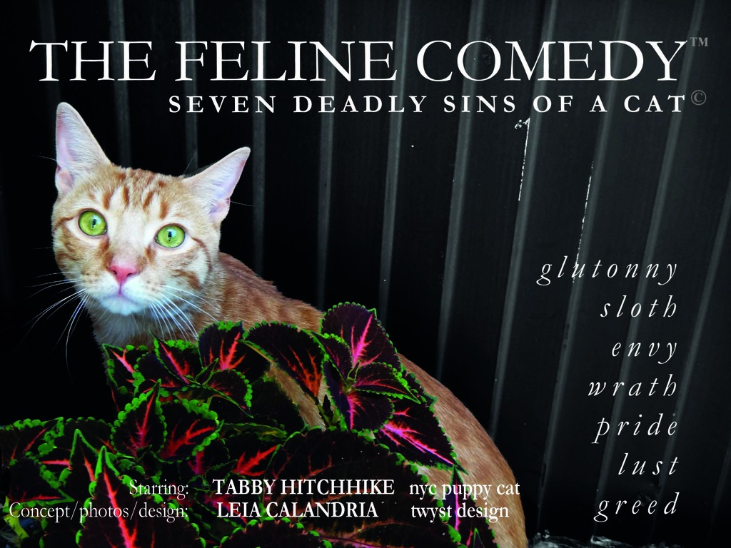 Seven Deadly Sins of a Cat - 2013 CALENDAR's video poster