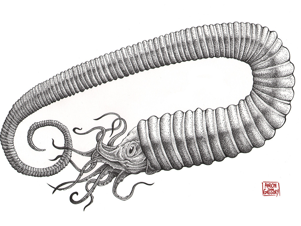 Original prehistoric illustrations on premium t-shirts's video poster