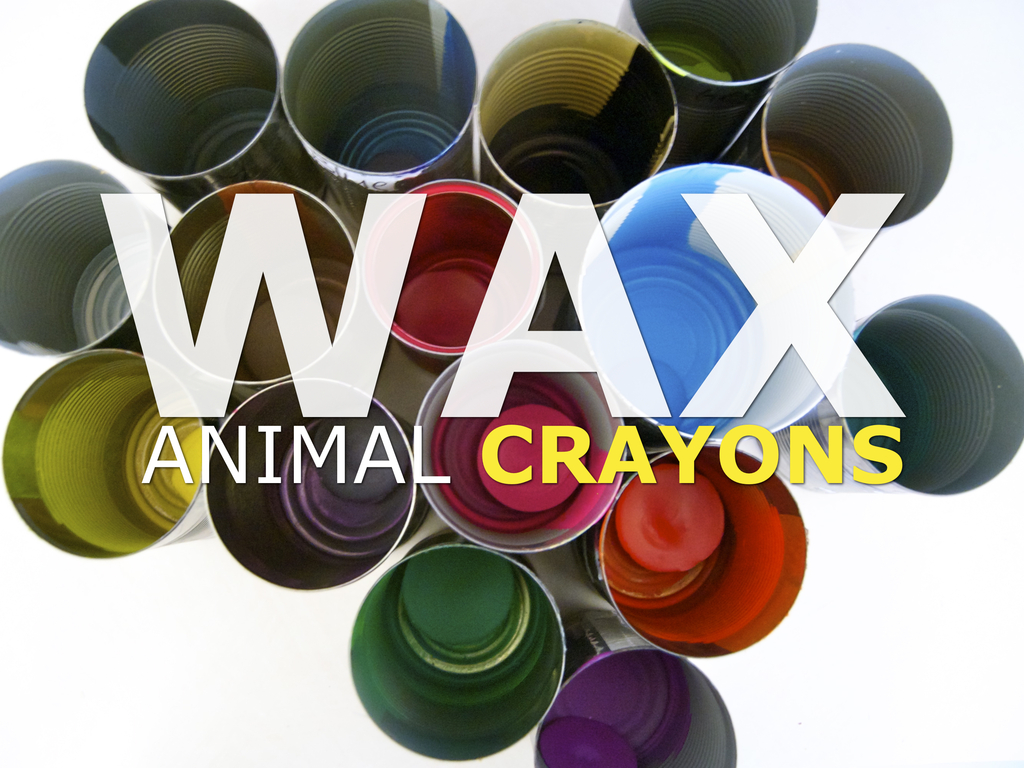 WAX: Animal Crayons's video poster