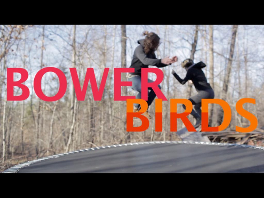 Bowerbirds' new album (and side project) made in DIY studio's video poster