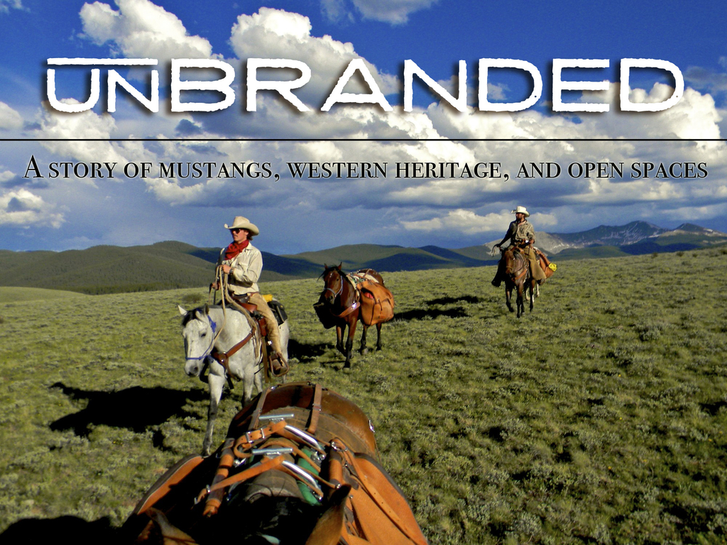 Unbranded's video poster