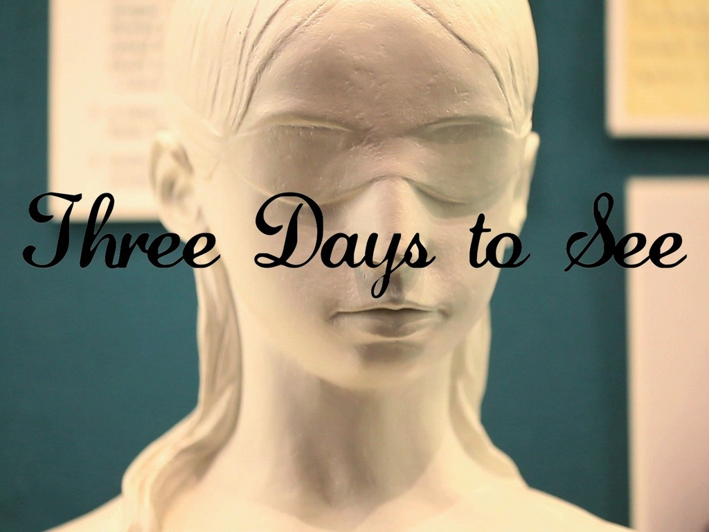 Three Days to See's video poster
