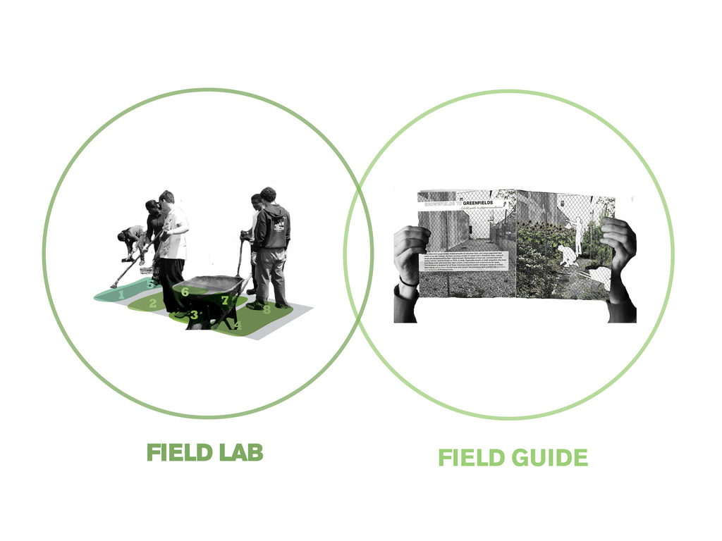 Field Guide to Phytoremediation's video poster