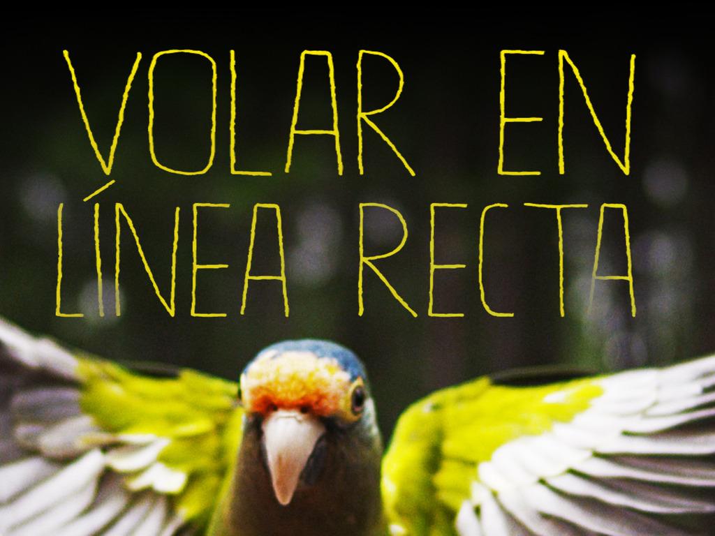 Nicaraguan Short Film: Post Production's video poster