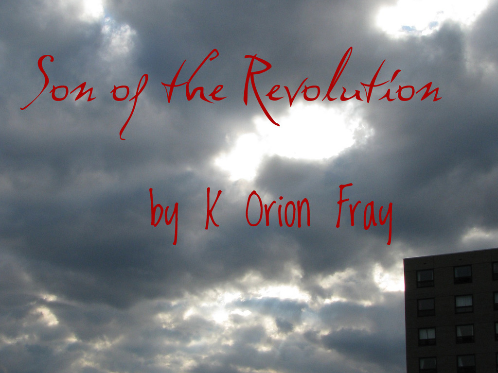 Son of the Revolution's video poster